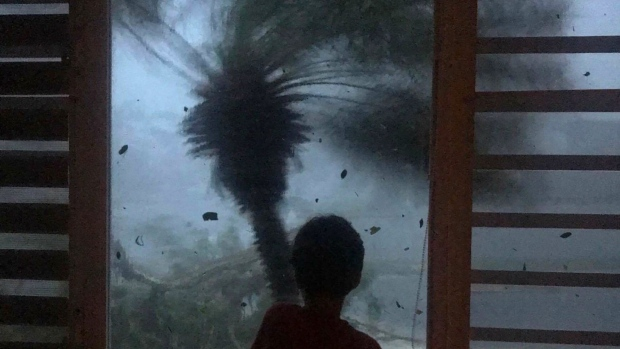In this early morning Sept. 20, 2017 photo, a young boy looks out the window as strong winds brought on by Hurricane Maria bend a palm tree and send debris flying, in Juncos, Puerto Rico. (Linda Rodriguez Flecha/AP Photo)