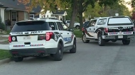 CTV Windsor: Tecumseh Road shooting
