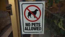 Victoria no pet policy