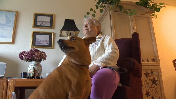 Some pet owners are being forced to make a heart-wrenching choice and give up their pet to secure a home. Oct. 19, 2017 (CTV Vancouver Island)