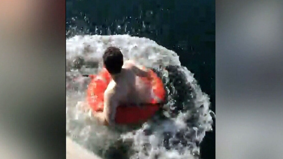 Nolan has experience as an open water diver and used a life preserver to swim over to the seagull.
