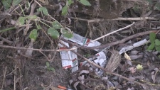 New concerns about needles in Cambridge