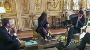 French President Emmanuel Macron's dog, Nemo, relieves himself near fireplace at Élysée Palace. (Credit: TF1 / LCI)