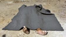 Body in a street of Qaryatayn, Syria
