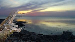 Beaconia Beach, Lake Winnipeg. Photo by Peter Carlyle-Gordge.