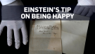 Einstein's theory of happiness found on notes