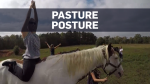Yogis get back to nature with horse yoga