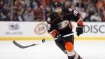 Anaheim Ducks' Patrick Eaves moves the puck during the team's NHL hockey game against the St. Louis Blues in Anaheim, Calif., on March 15, 2017. (THE CANADIAN PRESS/AP, Jae C. Hong)