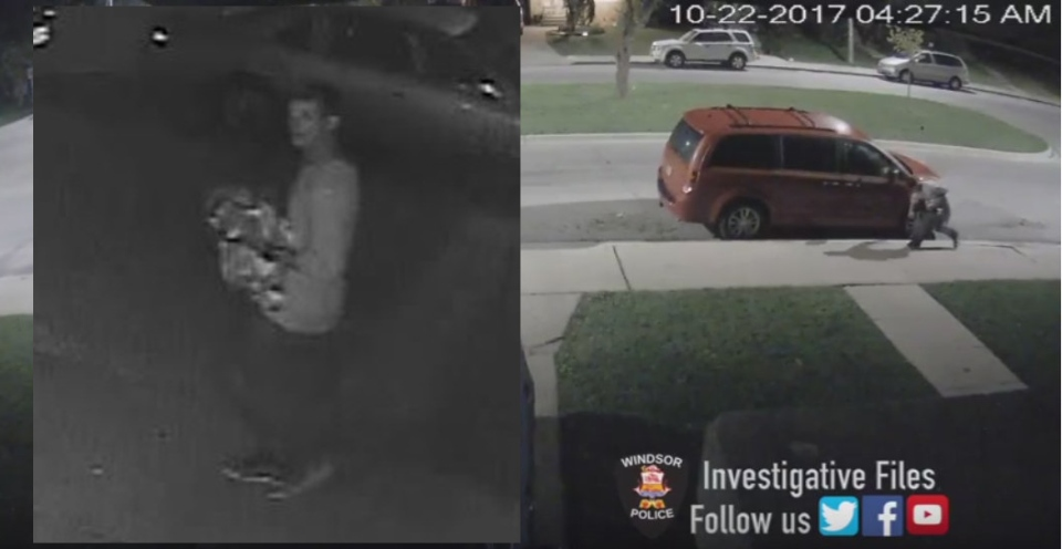 Windsor police are looking for a suspect believed responsible for puncturing tires and damaging 20 vehicles in Windsor, Ont. (Courtesy Windsor police)