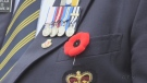 The Royal Canadian Legion says the poppy is worn every year to honour Canada's fallen soldiers.