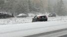 A car travelled into a ditch on Highway 19 south of Courtenay after snow fell on the route. Nov. 2, 2017. (CTV Vancouver Island)
