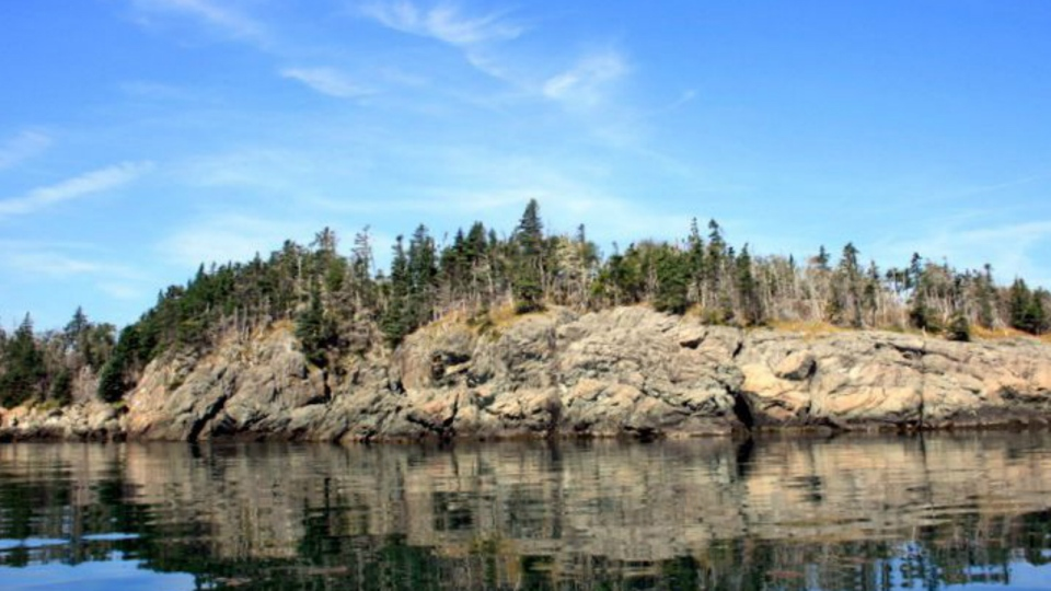 An island for sale in New Brunswick is shown in a handout photo. (HO-Dan Webster / THE CANADIAN PRESS)