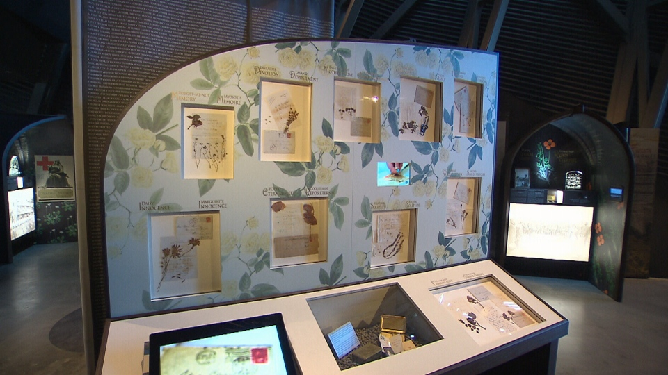 A multi-sensory exhibit called War Flowers is now on display at the Canadian War Museum in Ottawa.