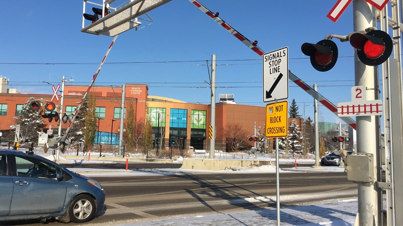 A train came to a full stop at the Princess Elizabeth intersection after the crossing arms lifted early Monday morning.