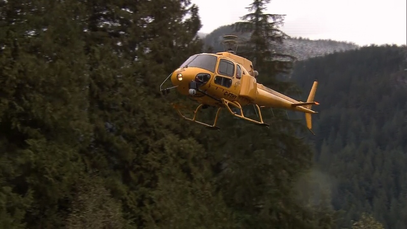 A North Shore rescue helicopter returns from a search in 2017 (File Photo / CTV).