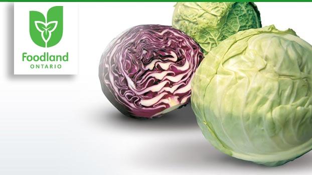 Ontario Vegetable and Lentil Stew