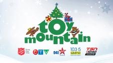 Toy Mountain 2017