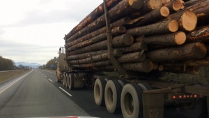 Police in Timmins say they are putting more focus on enforcing rules around logging vehicles operating within city limits after an incident this week when six houses were damaged. (File)