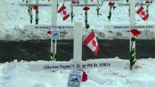 Remembrance Day, Field of Crosses, veterans, milit