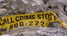 Police tape remains at the site where a human foot was found on Meaford's shoreline. (Roger Klein/Nov. 12, 2017)