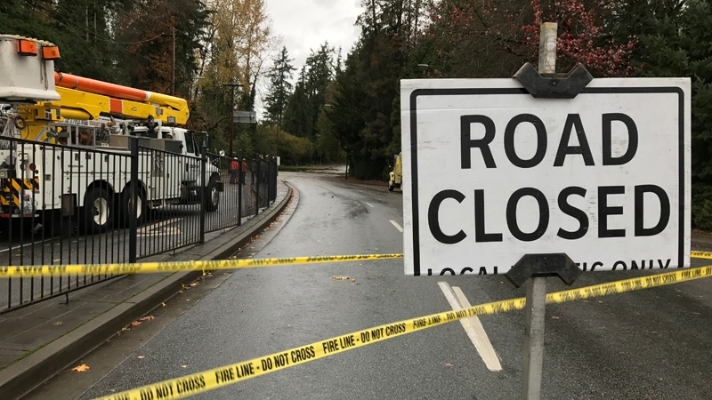 High winds knocked down a tree at Deer Lake Parkway and Canada Way in Burnaby, prompting a road closure, on Monday, Nov. 13, 2017. (Shelley Moore / CTV Vancouver)