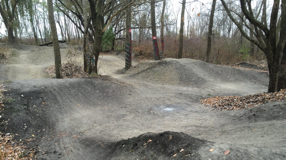 A group of mountain bikers wants the city to spare their homemade bike park tucked off the Ganatchio Trail in Windsor, Ont., Nov. 13, 2017. (Chris Campbell / CTV Windsor)