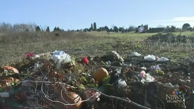 A not-for-profit that runs this cemetery in George's River says illegal dumping may be coming from visitors.