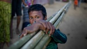 A Rohingya Muslim child looks to the camera, as he carries bamboo and walks towards at the Hakim Para refugee camp in Ukhiya, Bangladesh, Monday, Nov. 13, 2017. (AP / A.M. Ahad)