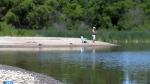Ottawa looking to help clean up Lake Winnipeg