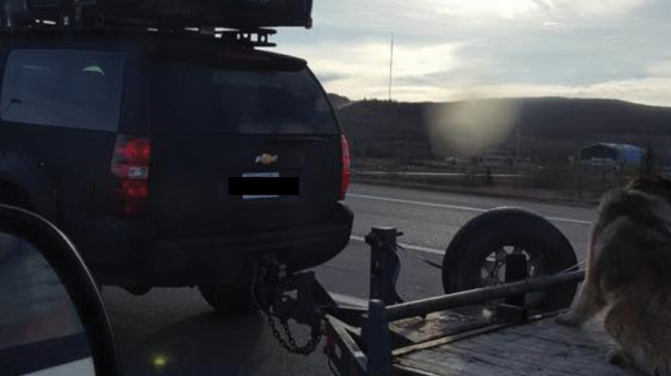 A dog was photographed tethered to a flatbed trailer in Calgary. (Calgary Humane Society)