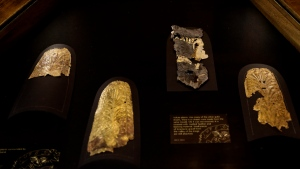 Ancient Egyptian gold artefacts, some restored and some left with small pieces of limestone gravel from the Valley of the Kings still attached, displayed in a glass case during the opening of the exhibition entitled Tutankhamun's Unseen Treasures marking the 115th anniversary of the Egyptian museum in Cairo, Egypt, Wednesday, Nov. 15, 2017. (AP Photo/Nariman El-Mofty)
