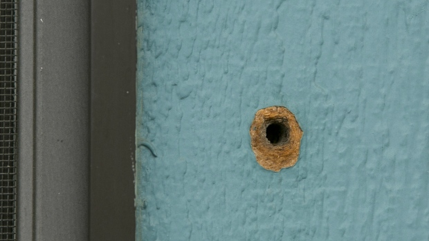 One of the bullet holes is seen in an exterior wall at the Rancho Tehama Elementary School from gunman Kevin Janson Neal's shooting rampage at Rancho Tehama Reserve, Calif. on Wednesday, Nov. 15, 2017. (AP / Rich Pedroncelli)