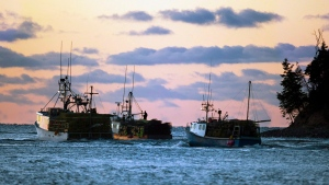 Fishing boats loaded with lobster traps head from Eastern Passage, N.S. on Tuesday, November 27, 2012. (THE CANADIAN PRESS/Andrew Vaughan)