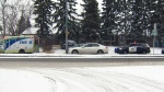 CTV Calgary: Snowfall causes difficult commute
