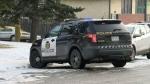 Forest Lawn crime scene - Nov 15 homicide