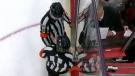 Flames - Red Wings brawl - Nov 16, 2017