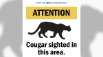 In a post on Facebook, City of Port Coquitlam staff warned a cougar was spotted near Blue Heron Crescent.
