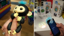 Experts believe Fingerlings (left) will be one of the most sought-after toys over the holidays, but they will be hard to find. Mastermind Toys' expert Ryan Carr says Moonlite will be a popular pick as well.