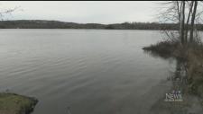 Sudbury lake tests positive for blue-green algae
