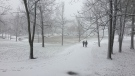 Montreal received it's first real snowfall on Sunday, Nov. 19, as seen in this photo taken at Mount Royal. (Photo: CTV Montreal)
