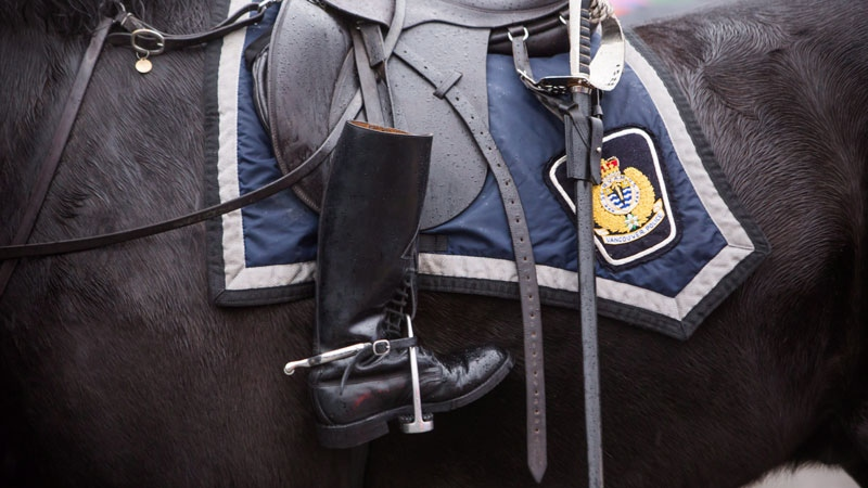 A riderless horse follows the funeral procession carrying the body of Abbotsford Police Const. John Davidson, who was killed in the line of duty on Nov. 6, as it makes its way to a memorial in Abbotsford, B.C., on Sunday November 19, 2017. (THE CANADIAN PRESS/Ben Nelms)
