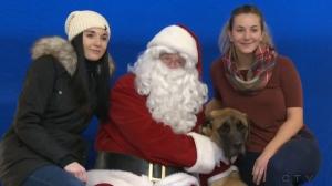 Santa visits pets