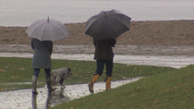 Heavy rain, wind and snow expected across South Coast