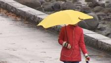 Rain and wind pound Metro Vancouver