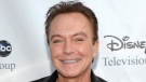 This Aug. 8, 2009 file photo shows actor-singer David Cassidy arrives at the ABC Disney Summer press tour party in Pasadena, Calif. (AP Photo/Dan Steinberg, File)