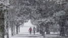 The weather pattern also calls for a winter that lingers, meaning the country could experience snowstorms as late as March. (THE CANADIAN PRESS/Darryl Dyck)