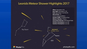 All you need to know about this year's Leonid meteor shower!