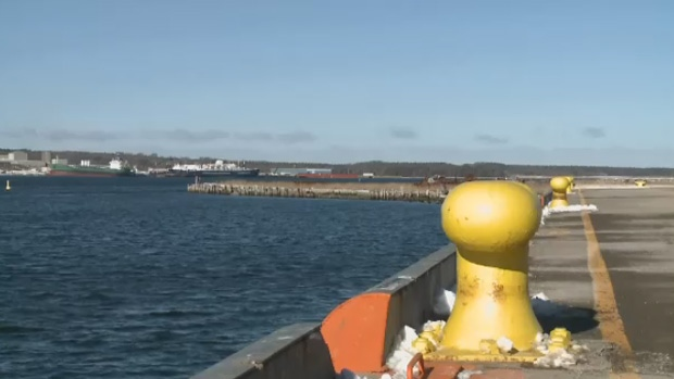 The mayor of the Cape Breton region says Sydney is one step closer to having a container terminal.