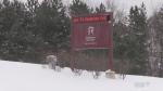 Sudbury college students anxious heading back