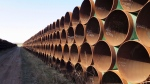 A yard in Gascoyne, ND., which has hundreds of kilometres of pipes stacked inside it that are supposed to go into the Keystone XL pipeline, should it ever be approved are shown shown on Wednesday April 22, 2015. U.S. President Donald Trump has given TransCanada Corp. their long awaited presidential permit for the Keystone XLpipeline, but analysts still aren't counting on it getting built. THE CANADIAN PRESS/Alex Panetta